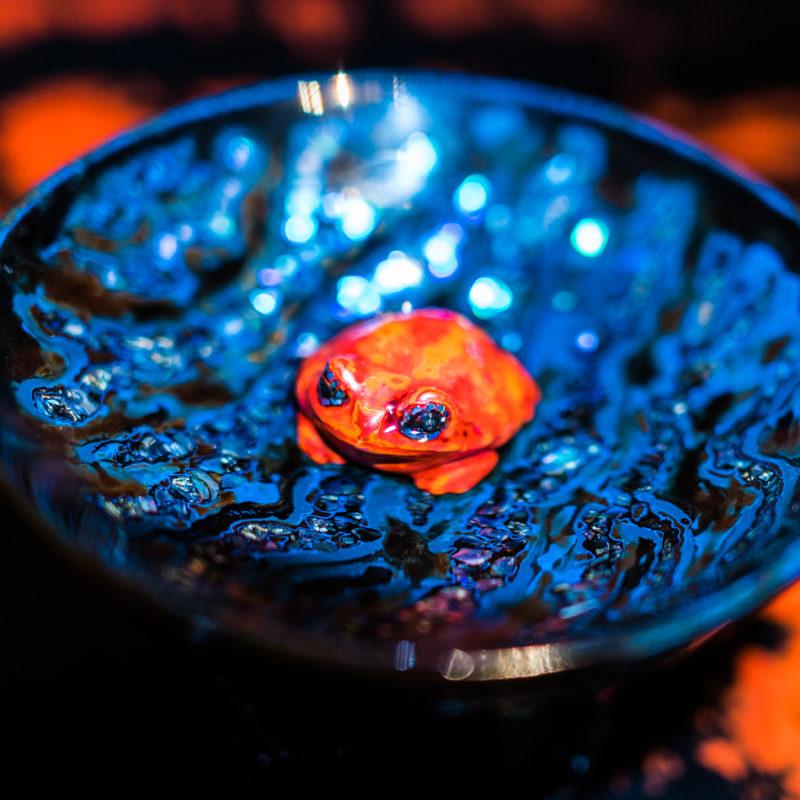 芯漆 蛙 ぐいのみ